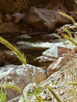 Mountain Stream - Digital Photography - By Chad Vidas, Photography Photography Artist