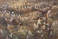 A Peaceful Place - Acrylics Paintings - By Duane Geisness, Wildlife Painting Artist