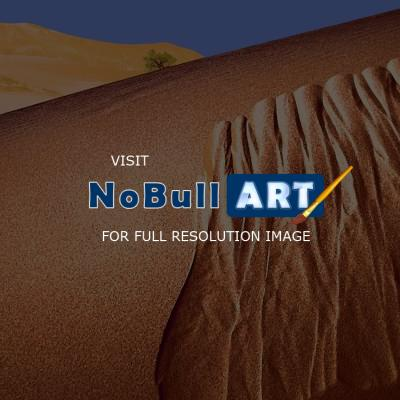 Western Exposures Gallery - Mojave Dunes - Photography