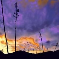 Borrego Desert Dawn - Photography Mixed Media - By Dean Uhlinger, Surrealism Mixed Media Artist