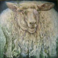 Animals - Ovis Clovis - Oil On Canvas
