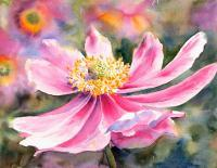 Florals - Pink Anemone - Watercolor