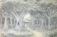 Forest Path - Black Fine Tip Pen On Paper Drawings - By Ron Kendall, Nature Drawing Artist