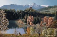 Switzerland Spring - Oil On Canvas Paintings - By Harry Walton, Realistic Impressionism Painting Artist