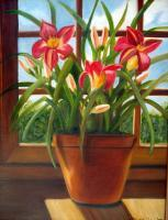 Still Life - Daylilies In The Window - Oils On Canvas