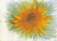 Water Color - Mandala Sunflower - Watercolor