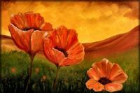 Giant Poppies - Oil  Acrylic On Canvas Paintings - By Peggy Garr, Modern Abstract Contemporary Painting Artist
