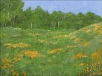 Landscapes - Crested Butte Meadow - Oil On Canvas