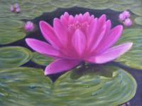 Floral - Water Lily - Oil