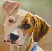Dog Series - Dog 8 - Oil On Board