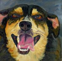 Dog Series - Dog  12 - Oil On Board