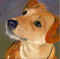 Dog Series - Dog 17 - Oil On Board