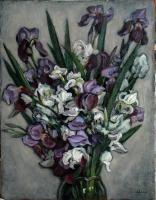 Still Life - Flowers - Oil On Canvas