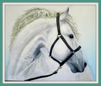 Painting - White Horse - Oil On Canavas