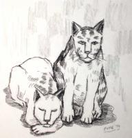 Cats - Rest - Conte On Paper