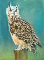 Great Horned Owl - Pastel Paintings - By Sue Lamarr Kramer, Realistic Painting Artist