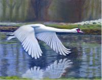 Pastel Paintings - Taking Flight - Pastel