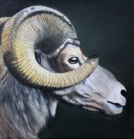 Paintings - Mr Big Horn - Acrylic On Canvas