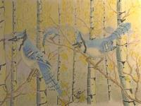Wild Life - Blue Jays - Colored Pencil