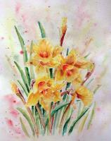 Daffodils - Watercolor Paintings - By Erika Kohutovic, Floral Painting Artist