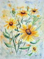 Floral - Sunflowers - Watercolor