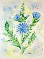 Floral - Forget Me Not - Watercolor