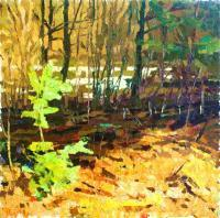 Landscape - Spring In Wood - Oil On Canvas