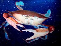 Whimsical Animals - Crab In Space - Oil