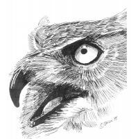 Wildlife Art - Great Horned Owl - Marker