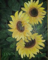 Sunflowers - Oil On Canvas Paintings - By Joanne Knox, Originals Painting Artist