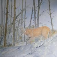 Realism - Cougar - Oil