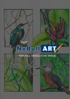 Nature - Birds 001 - Colored Pencil