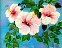 Flowers - Pink Hibiscus - Acrylic
