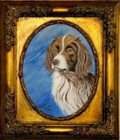 Dogs - Sandy--English Springer Spaniel - Acrylic