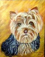 Dogs - Yorkshire Terrier - Acrylic