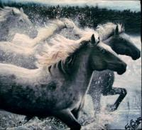 Animals - Horses Running In Water - Oils On Slate