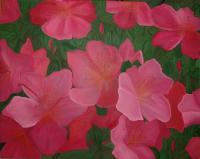 Flowers - New Beginning - Oil