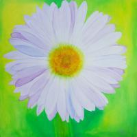 Nature - Irish Wildflower - Oil On Canvas