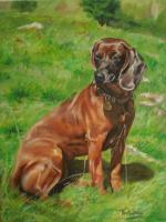 Aila - Oil On Canvas Paintings - By M V, Wildlife Painting Artist