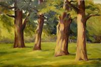 Landscapes - Oaks - Oil On Canvas