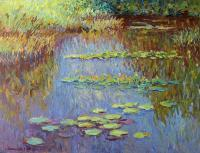 Pond - Lily Pond - Oil On Canvas