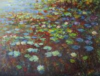 Pond - Water Lilies Nympheas - Oil On Canvas