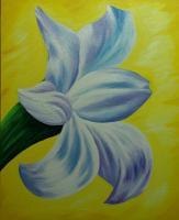 Flowers - White Lilly - Acrylic