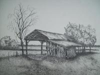 Florida Old Shed - Ink Drawings - By Tom Rechsteiner, Realism Drawing Artist