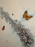 Toms Ink - Monarch Butterfly - Ink And Water Colors