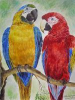 Animals - Blue And Redaras - Watercolour On The Paper