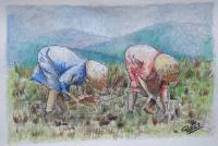 Painters Collection - Recolectoras De Arroz - Watercolor