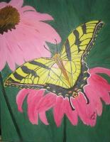 Restin Butterfly - Acrylic Photography - By Vanya Gonzalez, Nature Photography Artist