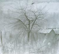 Old Apple-Tree 2008 - Graphit Pencil On Paper Drawings - By Yuri Yudaev, Realism Drawing Artist