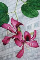 Hong Kong Orchid Tree Bauhinia Blakeana - Watercolour Paintings - By Julia Patience, Realism Painting Artist